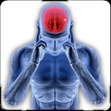meningioma-golovnogo-mozga